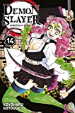 Demon Slayer - Tome 14