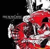 Songtexte von Fire in the Attic - Cum Grano Salis