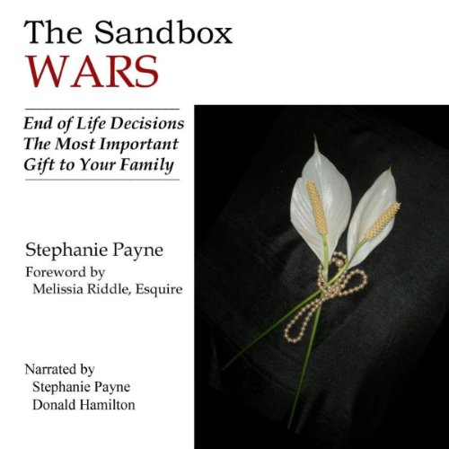 The Sandbox Wars audiobook cover art
