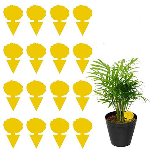 Zhongkaihua 24 Stück Fliegenfalle Gelbstecker, Insektenfalle Leimfallen zum Schutz von Zierpflanzen, Gelbtafeln, Dekorative Leimfalle Gegen Trauermücken