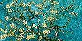 Lux Vincent Van Gogh Almendro en flor 100 x 50 cm Cuadro impresión sobre panel de madera MDF borde negro