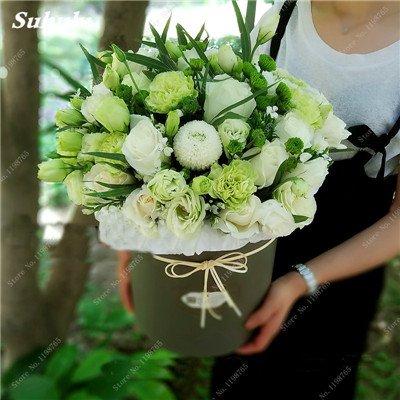 Mixed Seeds Rose, 200 Pcs Rare Bonsai Fleurs Rose, mélanger les couleurs Croissance naturelle Plante en pot pour le jardin Suppies Représentant Amour 7