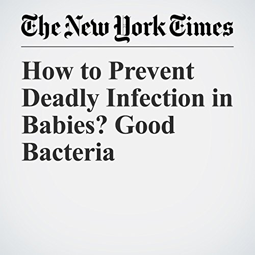 How to Prevent Deadly Infection in Babies? Good Bacteria copertina
