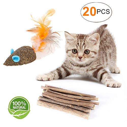 HomTop Cat Catnip Sticks Natural Matatabi Silvervine Sticks - Cleaning Teeth Molar Tools Kitten Cat Chew Toy Natural Catnip Mouse Cat Toy