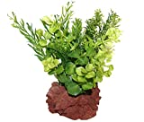 Rock Garden Natural Green Plant with Red Lava Rock Base, 6'