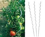 Benelando Tomaten-Spiralstab 180cm Stahl verzinkt - 2....