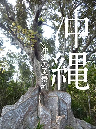 沖縄 #1: 美しい沖縄の風景 / Beautiful Landscape of Okinawa 国内旅行記