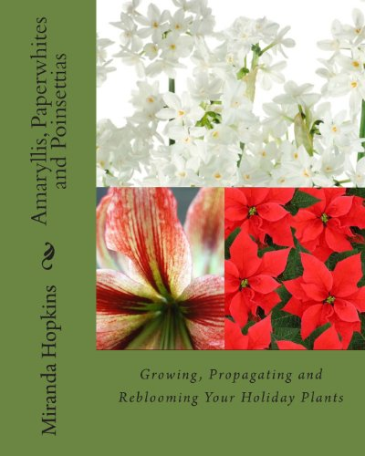 Amaryllis, Paperwhites and Poinsettias: Growing, Propagating and Reblooming Your Holiday Plants
