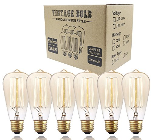 6 Pack, Rolay 60 Watt Vintage Edison Light Bulb with Squirrel Cage Filament, 110~130 Volts, E26 Base