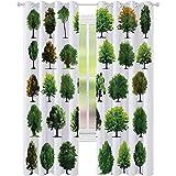 Cortinas térmicas con aislamiento, regalo de madre naturaleza, diferentes tipos de árboles y pinos, aviones, arbustos, 52 x 84, cortinas opacas para sala de estar, blanco y verde