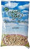Herbes Del Achicoria Raiz Eco 80Gr Envase - 500 g