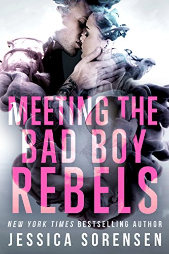 Meeting the Bad Boy Rebels: A Reverse Harem Series (The Undercover Files Book 1)