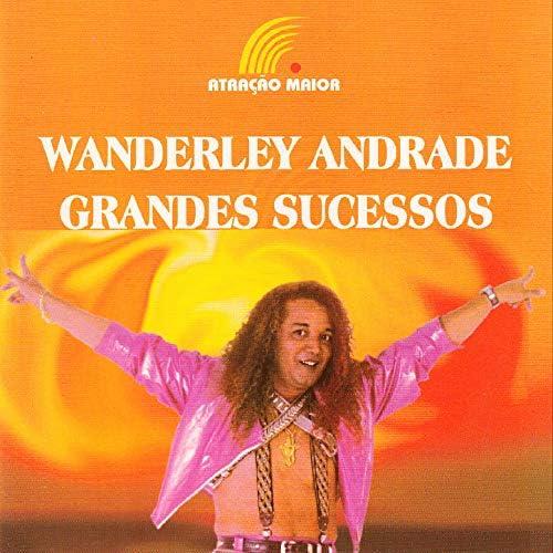 Wanderley Andrade