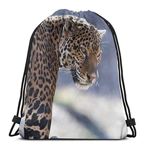 Perfect household goods Jaguar Feline Pelz Kordelzug Rucksack Tasche Leicht Gym Travel Yoga Casual Snackpack Schultertasche für Wandern Schwimmen Strand