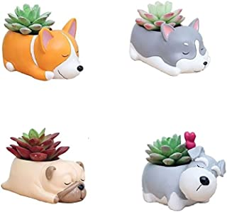Youfui Ceramic Animal Flowerpot Succulent Plants Container Desk Mini Ornaments (Sleep Crogi+Husky+Pug+Schnauzer)