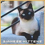 Siamese Kittens 2021 Wall Calendar: Official Siamese Kittens Calendar 2021, 12 Months