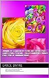 Journal de la Maison de Fleurs Arc-en-ciel Pages lignées pour l'écriture + collectionner des tirages d'art Série de journaux divins (LIVRES EN FRANÇAIS ET EN ANGLAIS - BOOKS IN FRENCH AND ENGLISH)
