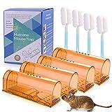 FORMIZON 4er Mausefalle lebend, Mausefalle, Wiederverwendbare Lebendfalle Mäuse, Tierfreundlich und Umweltbewusst Mäuse Fangen im Haus oder Garten, No-Kill-Maus, Verwendung im Innen- und Außenbereich
