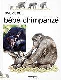 BEBE CHIMPANZE