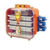 novital incubadora novital covatutto 108digitale automático 108huevos