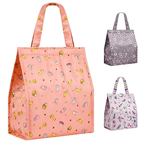 Lunch Bag Insulated Lunch Bags for Women Men Adults Girls Leakproof Reusable Lunch Bag for School Office OutdoorOrange Cat Large