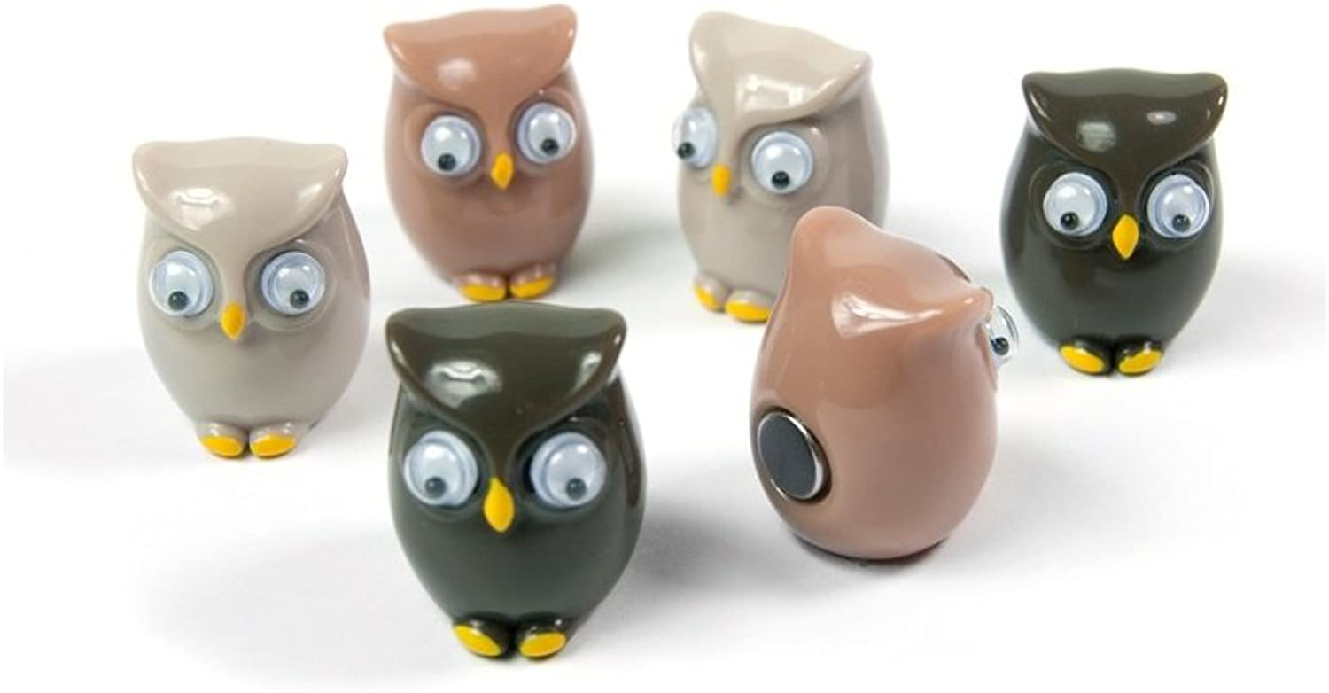 Assorted Animal Style Office Magnets  Owls (5 sets of 6)