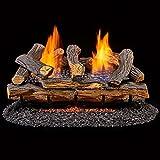 Top 10 Ventless Gas Logs
