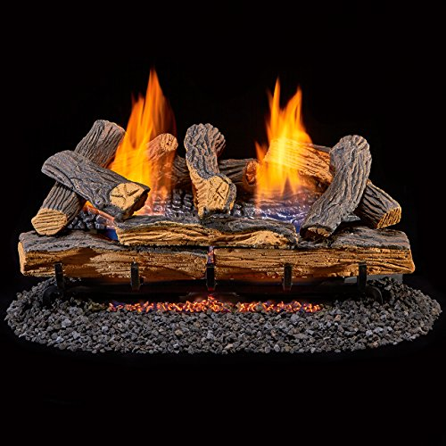 Duluth Forge DLS-24R-1 Ventless Dual Fuel Gas Log Set-Berkshire Split Oak-Remote Control, 24 Inch
