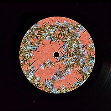 Coming Home (feat. Kipper Gray) [Infinium Remix]