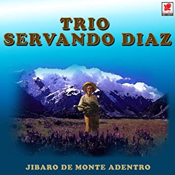 Jibaro De Monte Adentro