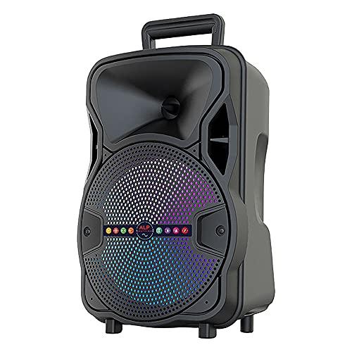 Altavoz Bluetooth Grande de Suelo Portátil Inalámbrico con Karaoke 8