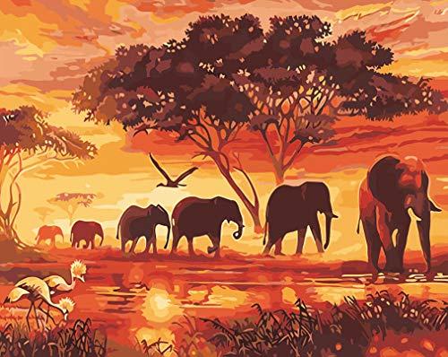 WONZOM Pintura por Números Kits 16 * 20 Pulgadas para Adultos Niños DIY Pintura al óleo sobre Lienzo con Pinceles y Acrílica Pinturas Elefante Animales Sin Marco