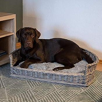 RM E-Commerce Panier pour chien en osier avec coussin - Gris - Tailles S à XL, pour chiens petits et grands