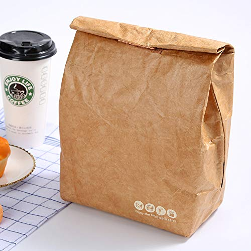 OUYAWEI Waterdichte Herbruikbare Lunch Box Lekvrij Geïsoleerd Bruin Papier Tyvek Lunch Bag BRON
