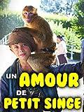 Un amour de petit singe