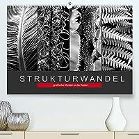 Strukturwandel, grafische Muster in der Natur (Premium, hochwertiger DIN A2 Wandkalender 2022, Kunstdruck in Hochglanz): Muster und Strukturen aus der Natur (Monatskalender, 14 Seiten )