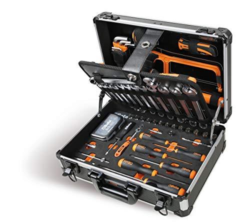 Beta 2054E/I-100 Koffer mit 100 professionellen Werkzeugen für die allgemeine Pflege