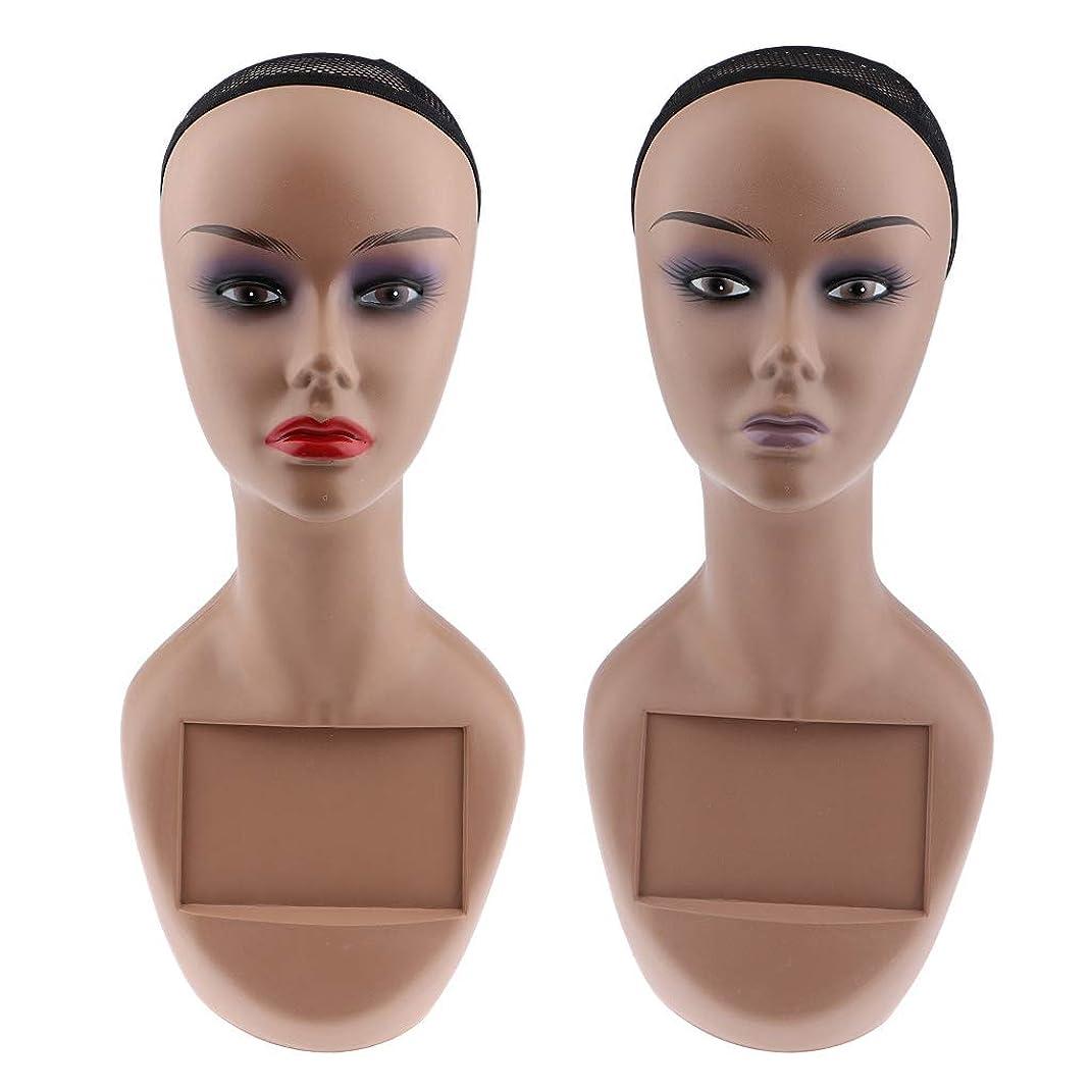 じゃない食器棚ハミングバードDYNWAVE ネットキャップ付き 女性用 マネキンヘッド 2個入り