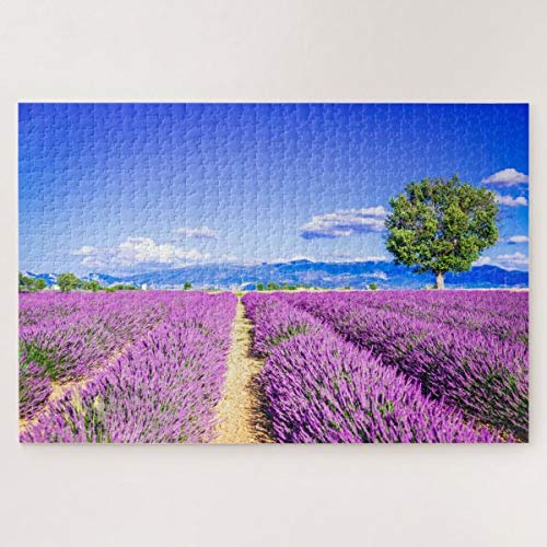 CICIDI Puzzle Provence France 1000 Pieces for Adults Or Children, Entertainment DIY Toys for Creative Gift Home Decor
