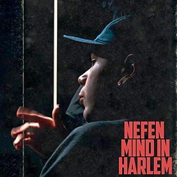 Mind in Harlem