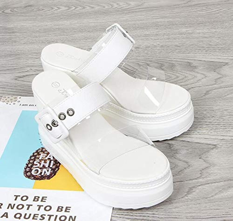 Women's Summer Sandals,Transparent Belt Buckle Slope Heels shoes Platform 10 cm