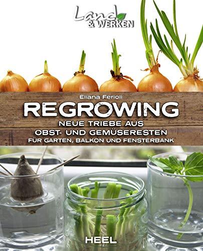 Regrowing: Neue Triebe aus Obst- und Gemüseresten (Land & Werken)