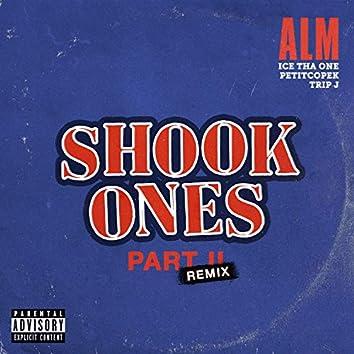 Shook Ones, Pt. II (Remixes)