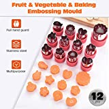 12 unids/Set Molde de Grabado Molde de Corte de Galletas Fruta Vegetal Fondant Cake Cookie Émbolo Molde Cortador Herramientas Cortar Moldes Cortes