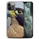 Stuff4 Phone Case for Apple iPhone 12 Pro Max Birds of Prey