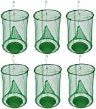 BMB Brands Ranch Fly Trap with Bait Tray 6 Pack Outdoor Hanging Reusable Flay Catcher Cage for Indoor Outdoor Parks Restaurants Farms