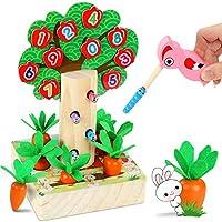 LETOMY Jouets Montessori en Bois, 3 IN1 Jouet Éducatif Magnétique-Forme Taille Tri Puzzle Pivert Nourrir Insectes Récolte...