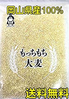 もっちもち大麦 950g チャック付き 令和元年岡山県産 送料無料