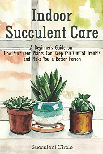 Indoor Succulent Care: A Beginner's Guide on How Succulent Plants Can Keep You Out of Trouble and Make You a Better Person