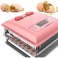 WISKEO Encantador Incubadoras Huevos, Inteligente Incubación, con Pantalla Led de Digital Temperatura, Volteo Automatico, Codornices Perdiz Canarios Pollo gallina Ganso 30 Huevos